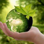 Nachhaltigkeit - Schönes gebraucht kaufen