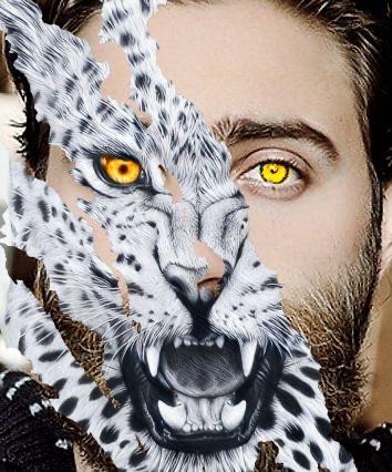 Gesicht eines Mannes, halb Mann, halb Leopard