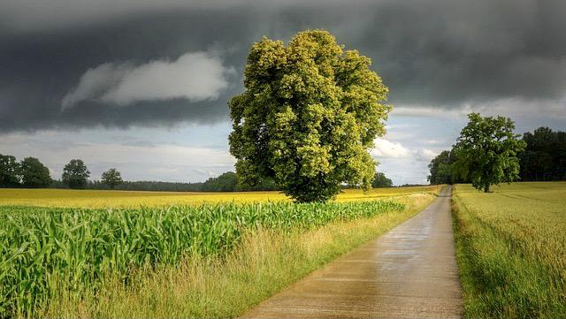 Landschaft, in der sich ein Gewitter anbahnt