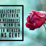 Gehen lassen ... von Abschied & Trauer - Teil 1