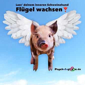 Kampf dem Inneren Schweinehund