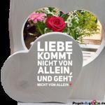 Liebe kommt nicht von allein ...