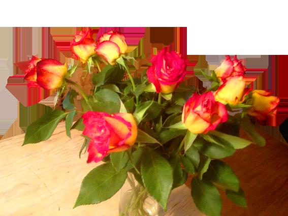 Rosen-zum-Einstand
